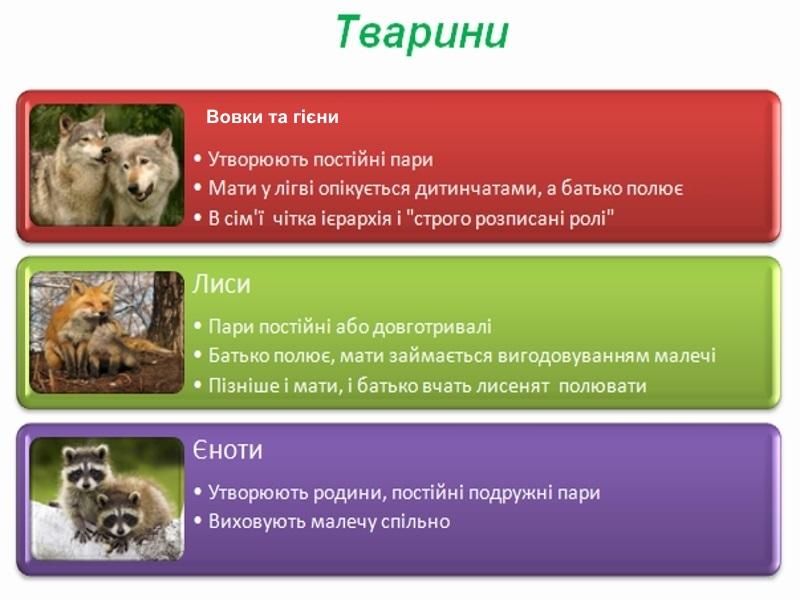 вовки та гієни